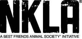 NKLA Image