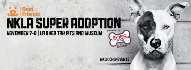 NKLA Super Adoption Weekend ad