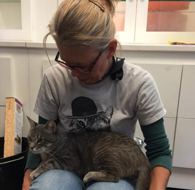 Debbie Guyer is a cat-focused volunteer at NKLA Pet Adoption Center.