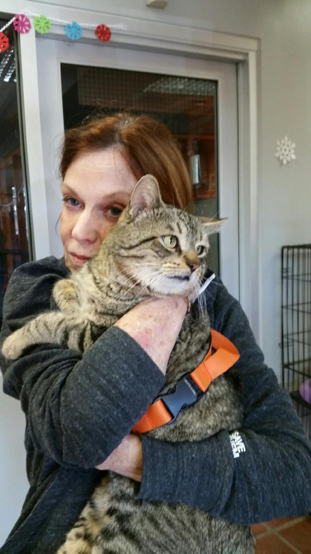 L.A. volunteer Connie snuggling a cat