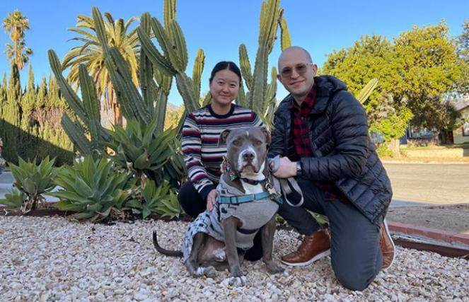 Pit bull with adopters