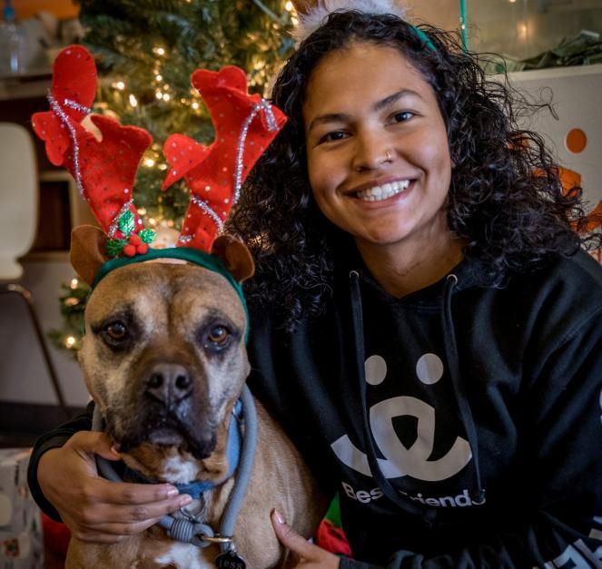Share Your Home for the Holidays...Fa-la-la-la-foster a Pet From Best Friends LA
