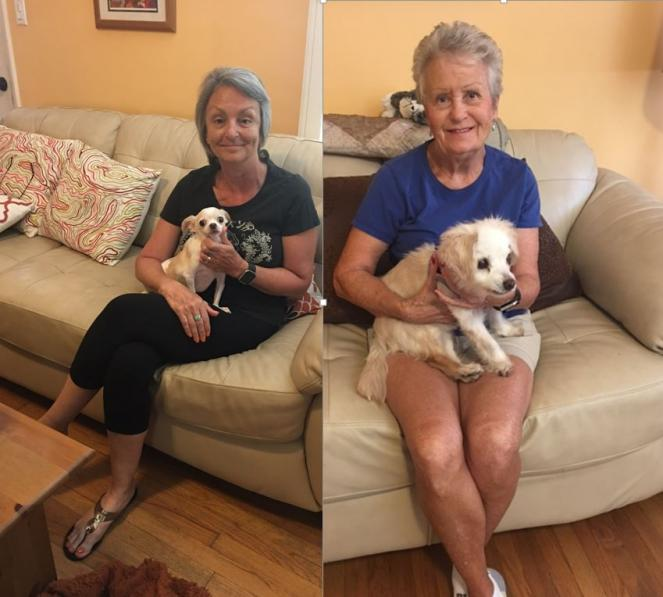 Volunteer Kim & Evelyn with two small dogs