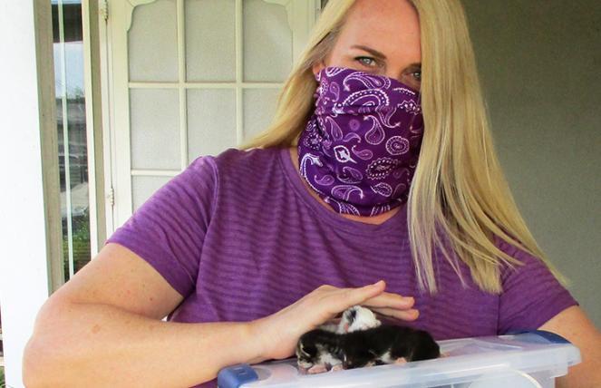 Kitten Kits courtesy of CatPAWS