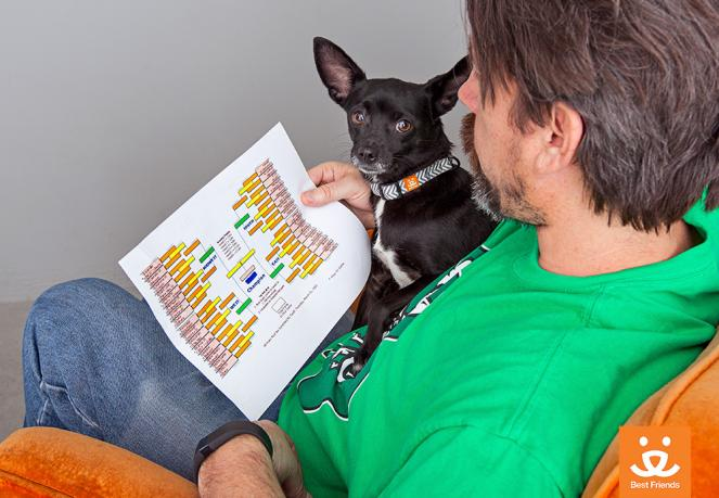 Man wearing a green shirt with a small dog