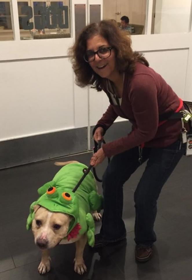 Volunteer Lori Winslow with her dog dressed up for Halloween