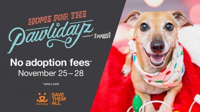 0 Pet Adoption Fees Best Friends Animal Society Los Angeles