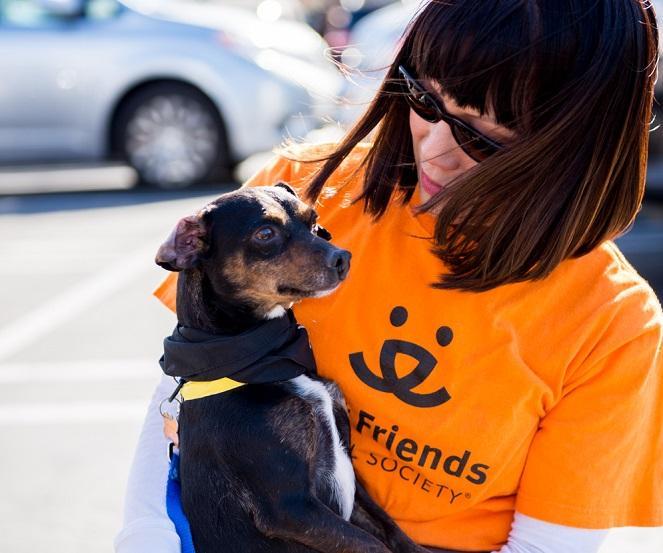 Volunteer Best Friends Animal Society Los Angeles