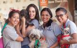 Volunteers at NKLA Adoption Weekend