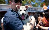 Meet Your New Best Friend at NKLA Super Adoption June 3 & 4 at Warner Park in Woodland Hills