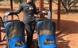 Volunteer Donna walking two cats in strollers