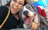 Volunteer Paulina with a gray and white pit bull terrier