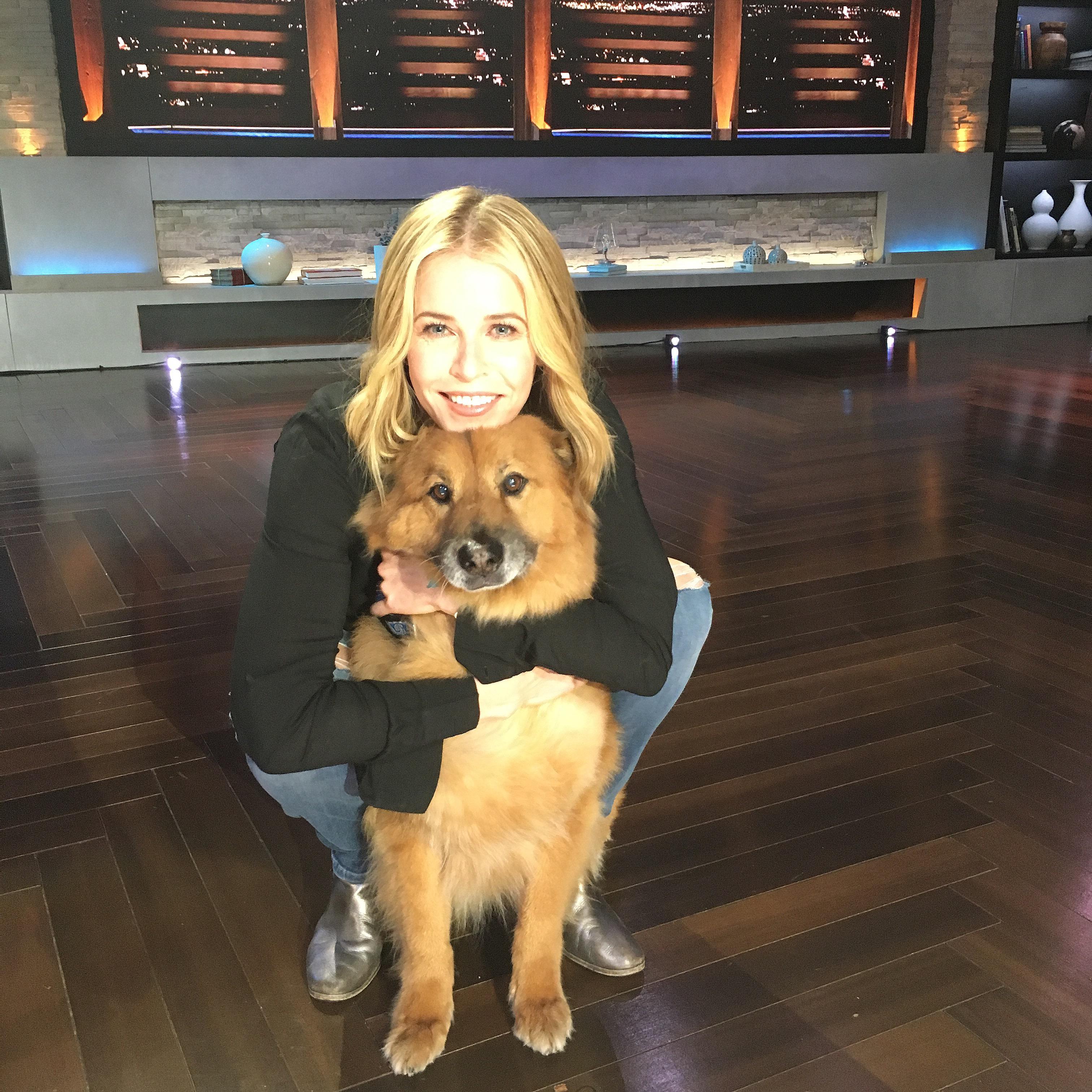 Amanda Seyfried and dog